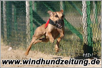 Xanthos Sohn_HD085183