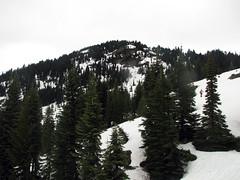looking-back-at-shriner-peak