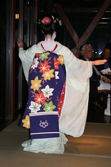 Leafy Obi (avsfan1321) Tags: blue white japan dance kyoto dancing performance makeup maiko geiko geisha tatami kimono obi gion furisode hanamachi apprenticegeisha darari danglingobi