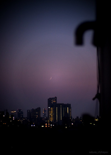 3116 : Crescent Moon