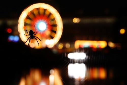 SuperEX Spider