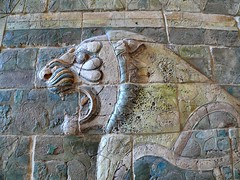 Roaring (dynamosquito) Tags: paris persian ancient iran louvre lion frieze frise iranian suse tp babylon ancien sush perse iranshahr babylone achaemenian iranien panasoniclumixdmcfz50 achmnide glazedbricks dynamosquito achaemenianart artachmnide