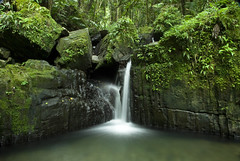 Waterfall, El Yunque Forest, Puerto Rico (jogorman) Tags: usa white green fall water pool rain forest river puerto waterfall pond rainforest stream el falls rico explore mina coco national tropical lush pure yunque explored mopr jamesogorman flickrcolour
