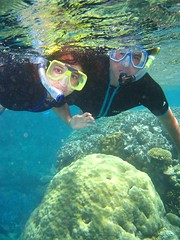 Snorkel_Outer Reef_PortDouglas (14) (Photo by Jose Manuel Segovia)