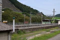 IMGP6464