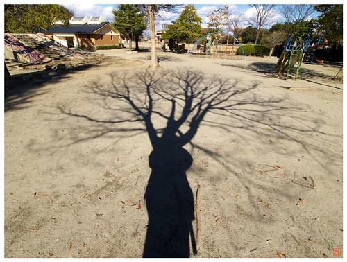 Shadow 081206 # 05