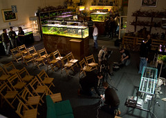 TGM ADA Demo - Setting up and chatting (Stu Worrall Photography) Tags: green ada tank stu machine demonstration meet planted aquascaping tgm stuworrall ukaps ukapsorg worralltgmthegreenmachineadademonstrationplantedta
