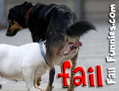 fail funnies. Tags: crazy funny fail