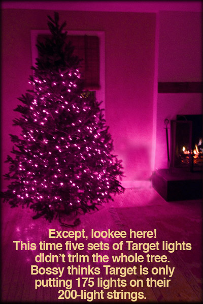 lights-on-tree