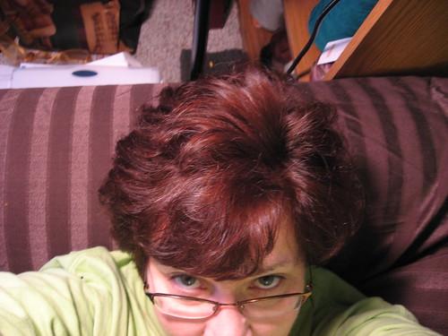 Henna Hair 005