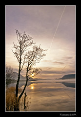 Bassenthwaite Sunrise, (numanoid69) Tags: uk england lake mountains tree water sunrise reflections dawn nationalpark lakedistrict tranquility calm cumbria fells daybreak bassenthwaitelake almostanything nikond300 prideofengland