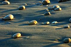 Piedras (kampru) Tags: stones piedras pedres