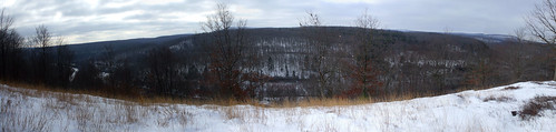 Fireline Trail Panorama2