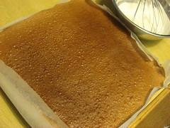 Cocoa sponge cake