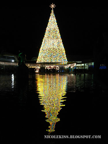 christmas tree reflection in sky park