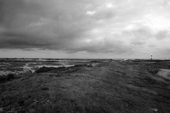 Dungeness (Alexei Wonderland) Tags: grass clouds landscape moors desolate