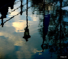 Upside Down in the river (Marc VC) Tags: reflection ice belgium mechelen ijs malines reflectie dyle dijle conceptualimage belgibelgique weerspiegelingnlantaarn