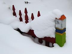 gate (Lori Greig) Tags: winter snow cold weather season gate colorado buried fresh minimal vail blizzard drift minturn