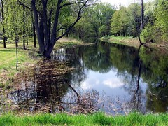 Lake in Otwock Wielki Park (Jacek Magryta) Tags: lake reflection tree water river landscape poland jacek stary vistula mazowsze otwock masovia abigfave theunforgettablepictures winnr mirrorser mygearandme mygearandmepremium mygearandmebronze