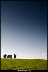 Minimal trees (otrocalpe) Tags: trees sky italy cloud alberi clouds canon landscape italia nuvole nuvola minimal cielo 5d minimalism marche colline ancona castelfidardo minimale supershot abigfave impressedbeauty otrocalpe otrophotography