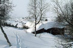 Haukeli_Vinter_50 (Funkyoslo) Tags: winter mountain snow ski boys cottage young haukeli