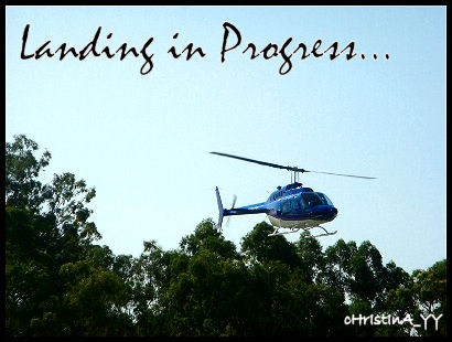Helicopter Joyflights: Lading in Progress