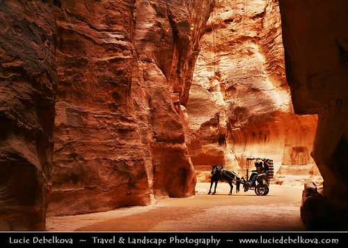 Jordan - Petra - Jordan - Petra - Horse Carriage Passing through The Siq