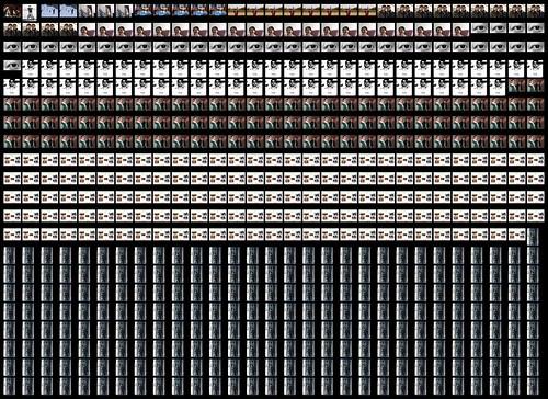 Fibonacci Collage