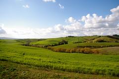 Random Tuscan landscape #2345