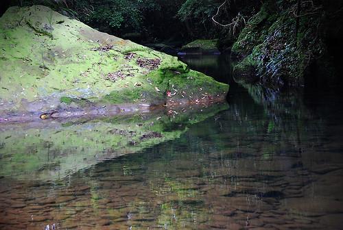 美麗的溪水