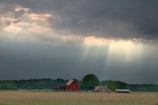 Farm near Sycamore, Illinois