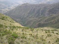 Great Rift Valley, 3 (sluggo5) Tags: ethiopia riftvalley menz guassa