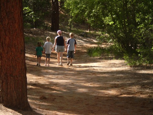 A family hike in the woods in Bandelier National Monument