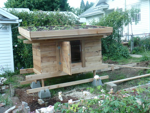 Living Roof Coops Community Chickens