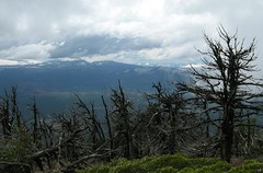 Mount Washington (OpalMirror) Tags: trees mountain black oregon fire volcano washington high butte central hike mount trail cascades summit geology damaged