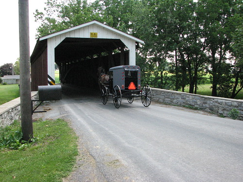 Buggy through covered bridge