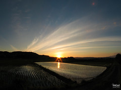 Sunset & Wind (Pixie Led) Tags: sunset sky water japan canon rice wind powershot naturesfinest pixieled