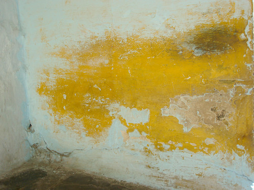 Yellow Drybrush