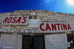 Rosa's Cantina (Satxvike) Tags: texas elpaso rosas martyrobbins rosascantina satxvike henrydelgado
