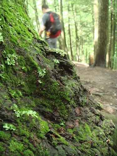 2008.07.12 Vermont 043