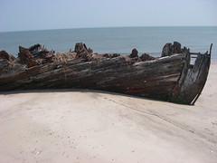 IMGP0179 (paulsyak) Tags: kayak lewes delawarebay beachplumislandshipwreck