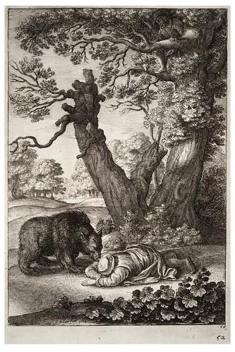 09- El guardabosques y el oso