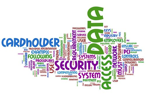 Information Security Wordle: PCI Data Security Standard