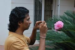 Color Changing Flower 2 (mynameisharsha) Tags: pink flower macro beautiful nikon soft petal delicate d60 1855mmf3556gvr mynameisharsha