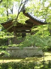 CIMG0804 (zgware) Tags: japan tokyo kyoto tea