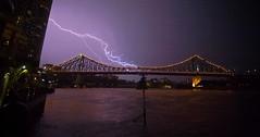 Brisbane Storms (C) 2008