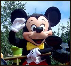 Hi Mickey!