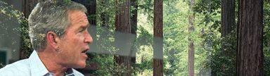 Kinship Circle - 2008-12-19 - Exit Strategy 01