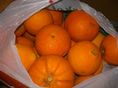 navel oranges fournes hania chania