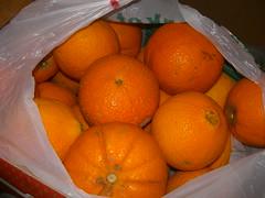 navel oranges fournes hania chania